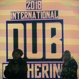 DJ Skirtbag International Dub Gathering 2018 MIX #IDG2018