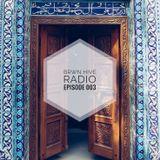 BRWN HIVE RADIO EPISODE 003