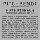 nut nut shaun mix // techno acid & breaks