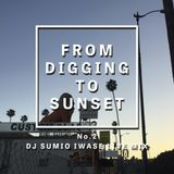 FROM DIGGING TO SUNSET No.2