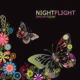 Dmitry Tichy - Night Flight 2012 (Promo CD)