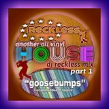 goosebumps house part 1 dj reckless