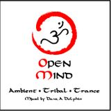 DJ Dave Dolphin - Open Mind 2013 edit