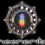 Luke Mandala @ MOONTRIBE 21YEAR ANNIVERSARY (june2014) (free D.L.)