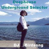 Deephouse Underground Selector