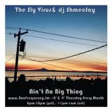 Ain't No Big Thing Radio. The Sly Virus.