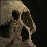Audio Archaeology Radio: Volume XXI