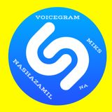 Voicegram - Nashazamil Na Miks