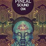 Pineal Sound 014 - Kevin Masoni (Set)