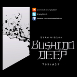 Bushido Deep Podcast 008 (May 2013) (inc. 30 min guest mix - Steve Arnold)
