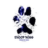 DJ ANDIS PRESENTS: SNOOP DOGG TRIBUTE