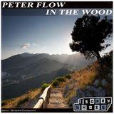 Peter Flow - In the wood