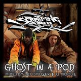 Screaming Soul - 'Ghost in a Pod' Mixed by DJ Moodie & Lucid Mover