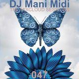 047- DJ Mani Midi: Imaginal Cells DJ Mix