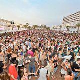 """Insomnia FM """"Summer Festival 2013"""""""