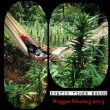 REGGAE HEALING 2015