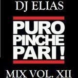 DJ Elias - Puro Pinche Pari Vol. XII.