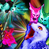 Mixtape #1 - Wild Animals Know how to Party