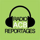 Reportage au CDI (07/03/2017)