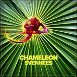 SVEN VAN HEES - CHAMELEON (CD2 : THE RHYTHM)