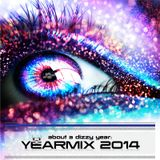 The Dizzy DJ - about a dizzy year - YEARMIX 2014