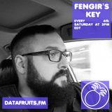Fengir's Key 05 - datafruits.fm