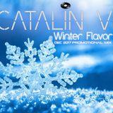 Catalin V. - Winter Flavor (December 2017 Promotional Mix)