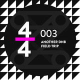 4/4 003 - Another DnB Field Trip