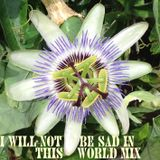 I Will Not Be Sad in this World Mixtape