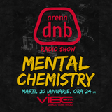 Arena dnb radio show - vibe fm - mixed by MENTAL CHEMISTRY - January 20th 2015