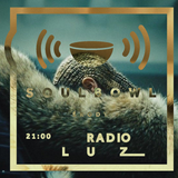 Soulbowl w Radiu LUZ: 102. Overload/Bangtime (2017-03-14)