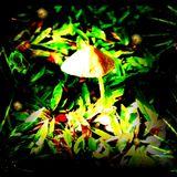 LIVESET Trance prog-Psytrance 1 h 20 by FoolKan