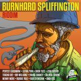 Selekta Faya Gong - Burnhard Spliffington Riddim mix promo 2017