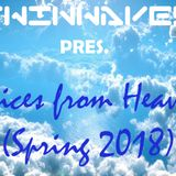 Twinwaves pres. Voices from Heaven (Spring 2018)