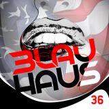 3LAU HAUS #36 (We The People)