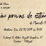 Entrevista | Marcelo Forte - São Provas de Estima | Galeria Santa Clara [01/11]