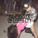 Dancehall University - Raw Selection Vol.1