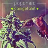 pogonerd - can i get a hit