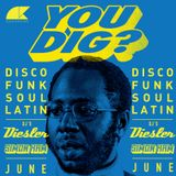 You Dig? Podcast 06/2015 - Compiled By Simon Ham & Diesler