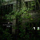 Deep Electronics Podcast # 113 - SHLTR