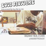 Soul Flowers - Vagrant Real Estate - Instrumental Hip-Hop Mix Vol. 001
