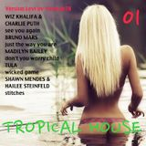 TROPICAL HOUSE 01 (Wiz Khalifa, Charlie Puth, Bruno Mars, Madilyn Bailey, Tula, shawn Mendes ...)