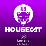 DJ Friction Mix For Deep House Cat Show 9/2014