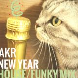 New year house/funky mix
