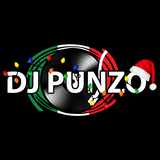 Nocturnal Vibes #226 - Mixed by: DJ Punzo