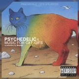 V/A - PSYCHEDELIC 1: Music For Cat .Gifs (compilation)