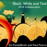 Black,white and teal -  Dj pandaBinah and Paul Fearns