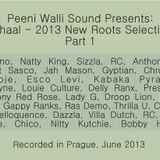 Mihaal - 2013 New Roots Selection - Part 1