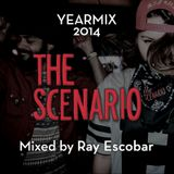 THE SCENARIO yearmix 2014 by Ray Escobar