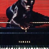 Jungle Concerto : 94-96 Jungle with amazing piano melodies and samples